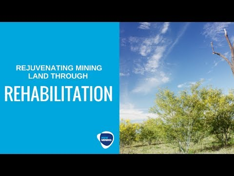 Mining Rehabilitation - Mangoola Coal Mine, NSW Hunter Valley
