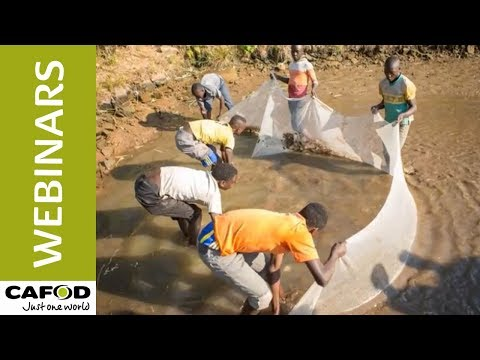 Listening to the cry of the earth and the cry of the poor | CAFOD