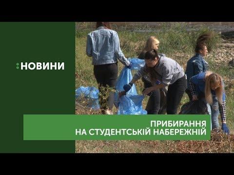 Близько півсотні пакетів сміття зібрали в Ужгороді учасники екоакції