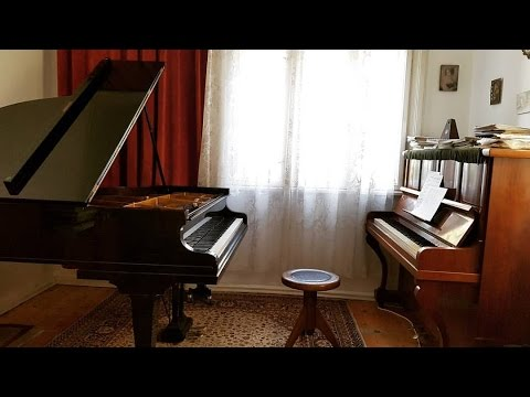 I Just Bought a C. Bechstein - A Dream Come True!