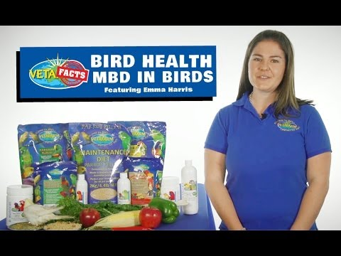 Bird Health - MBD in birds