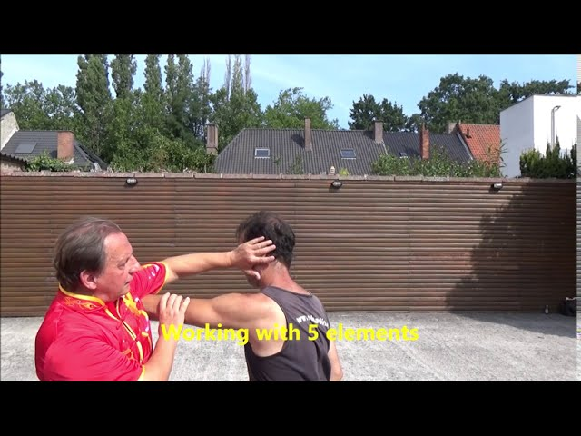GM Walter Toch application selfdefense on GB Meridian