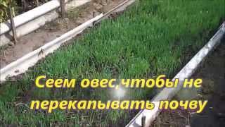 видео О вреде перекапывания почвы