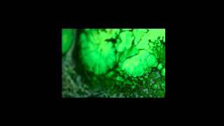 Amon Tobin - Shut Down