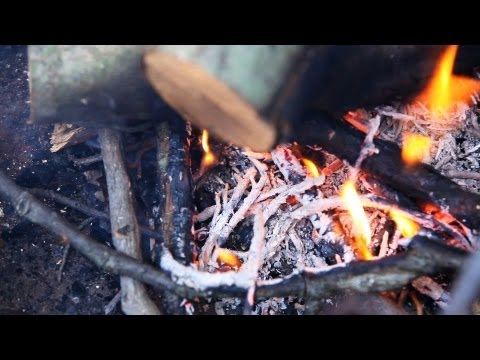 How to Put Out a Campfire Safely | Camping
