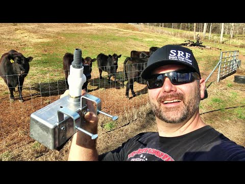 You've Never Seen Livestock Watering System Like This! Automatic No Electricity!