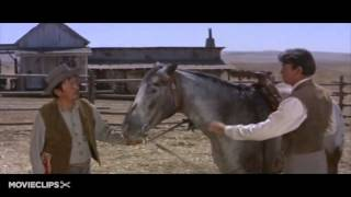THE STRAWBERRY ROAN   MARTY ROBBINS