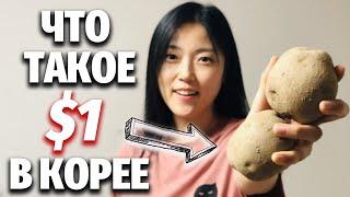 ЧЕМ ЗАНЯТЬСЯ, КОГДА В КАРМАНЕ ОДИН ДОЛЛАР | Цены в Корее смотреть онлайн в хорошем качестве - VIDEOOO