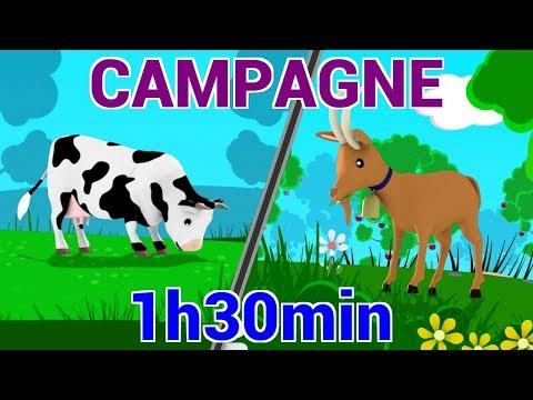 Chansons à la Campagne - Les Patapons