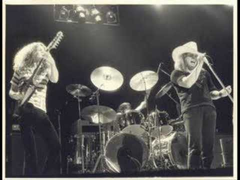 Lynyrd Skynyrd-Honky Tonk Night Time Man