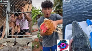 Willy Tube Funny TikTok 2020 - TikTok Trend