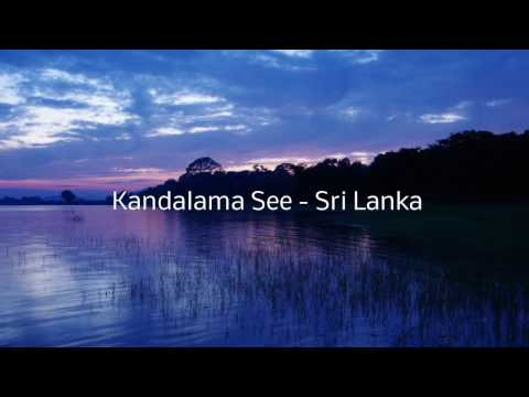 Kandalama See - Sri Lanka  - Timelapse     kandalama 2013