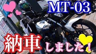【モトブログ】納車おめでとうっ!! あねごバイクを買う!!! / MT−03 CBR250rr BOLT thumbnail