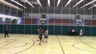 Man Ho (Sport) Co. Ltd 7th TAC Super League 058 02 HOPE vs 嵐流5:2...