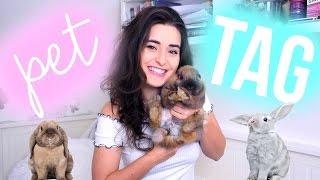 PET TAG | Operace mého králíčka?