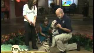 Paul Owens, The Original Dog Whisperer, On Wfla-tv Daytime, Tampa, Florida