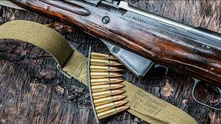 Чем винтовка отличается от карабина?