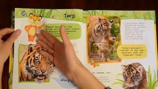 Что читать детям?Обзор энциклопедии о животных для детей.