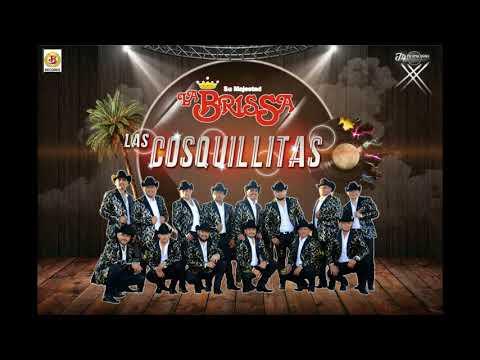 LAS COSQUILLITAS - Su Majestad La BrisSa - Promo Abril 2018