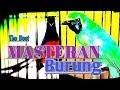 Masteran Mantab Kompilasin Suara Isian Cocok Untuk Murai Batu Cucak Ijo Kacer Dan Lai Lain  Mp3 - Mp4 Download