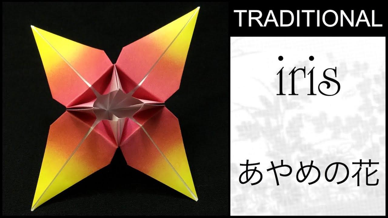 IRIS FROM TRIANGLE Traditional Origami Three Petal Iris Flower ... | 720x1280