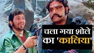 Kalia From 'sholay' Robert From 'andaz Apna Apna' Aka Viju Khote Passes Away In Mumbai