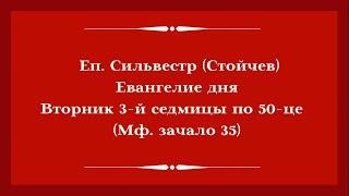 Еп. Сильвестр (Стойчев). 23.06.2020. Евангелие дня с толкованием