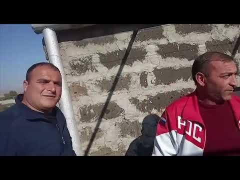 Соревнавание голубей в Армении 2019г