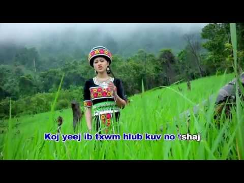 Hmong New Song 2016 nkauj hli vwj & tub ntxawg vaj