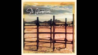 "Gin Blossoms, ""Until I Fall Away"""