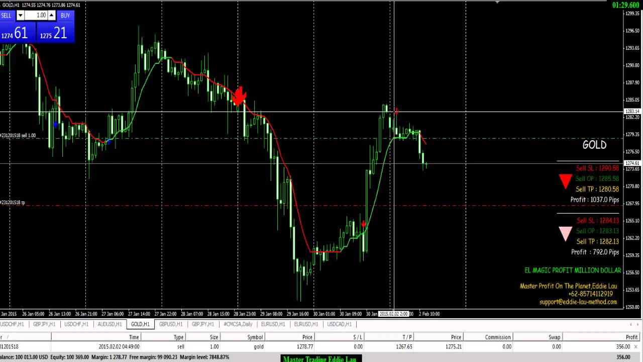 Software Signal Options, Forex Trading Terbaik | Workshop Options Terbaik di Surabaya