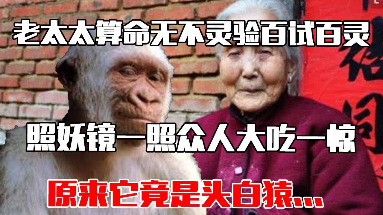 【中国故事】 老太太算命无不灵验百试百灵,照妖镜一照众人大吃一惊,原来它竟是头白猿