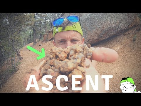 Pikes Peak Ascent: Race Shoes, Course Overview, And Tips