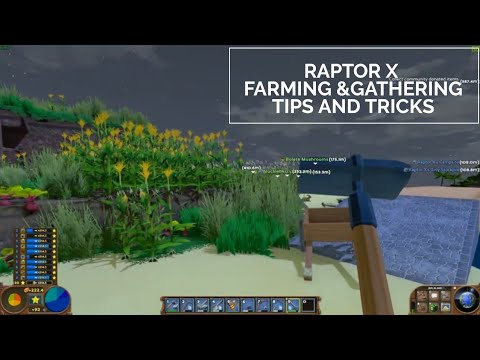 *Farming & Gathering Tips and tricks* Raptor X | ECO Tips and Tricks 02