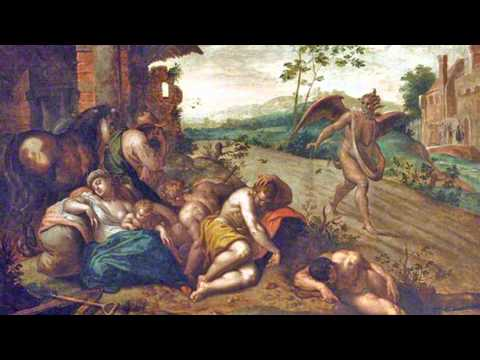 Wheat and Weeds - July 20, 2014 Homily