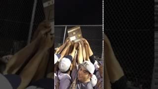 Northeast Eagles baseball team celebrates Region 5-AAA title