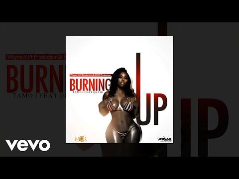 Tamo J - Burning Up (feat. Qraig) [Official Audio]