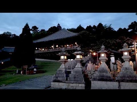 """kevn Japan Tour 2015"" // Documentary ♪ ドキュメンタリー"