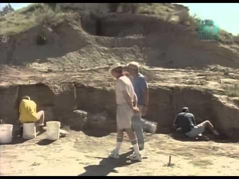 Troodon: Dinosaur Genius [Full video] [Paleoworld]