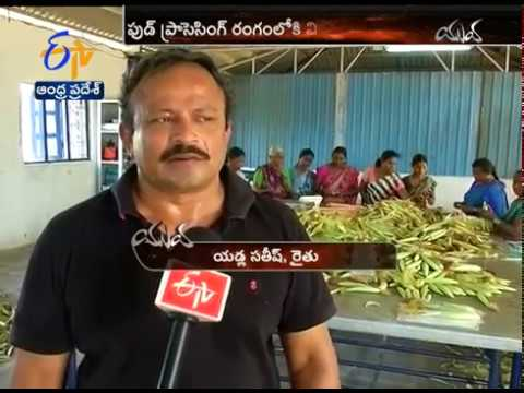 Software Engineer Turns Into Farmer | Yuva