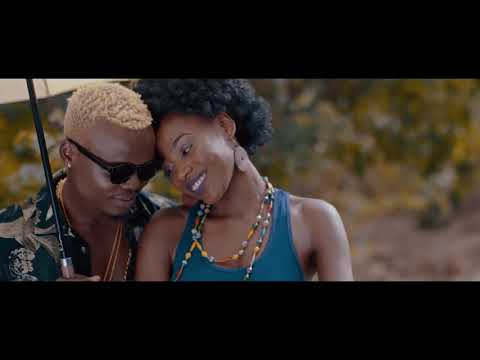 jah-prayzah-x-harmonize---ndoenda-(official-music-video)