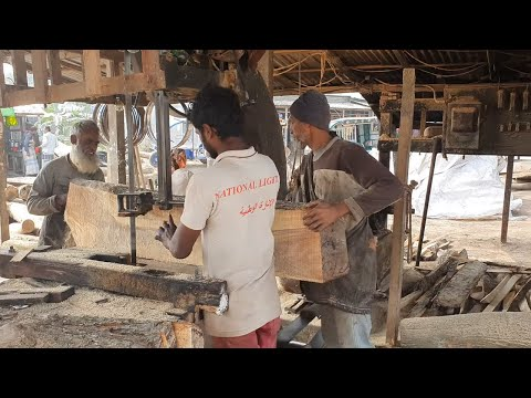 Solid Wood BDT 7,000 Cutting by Old and Young Staff।Quality Wood Cutting by Skilled Staff।Logging