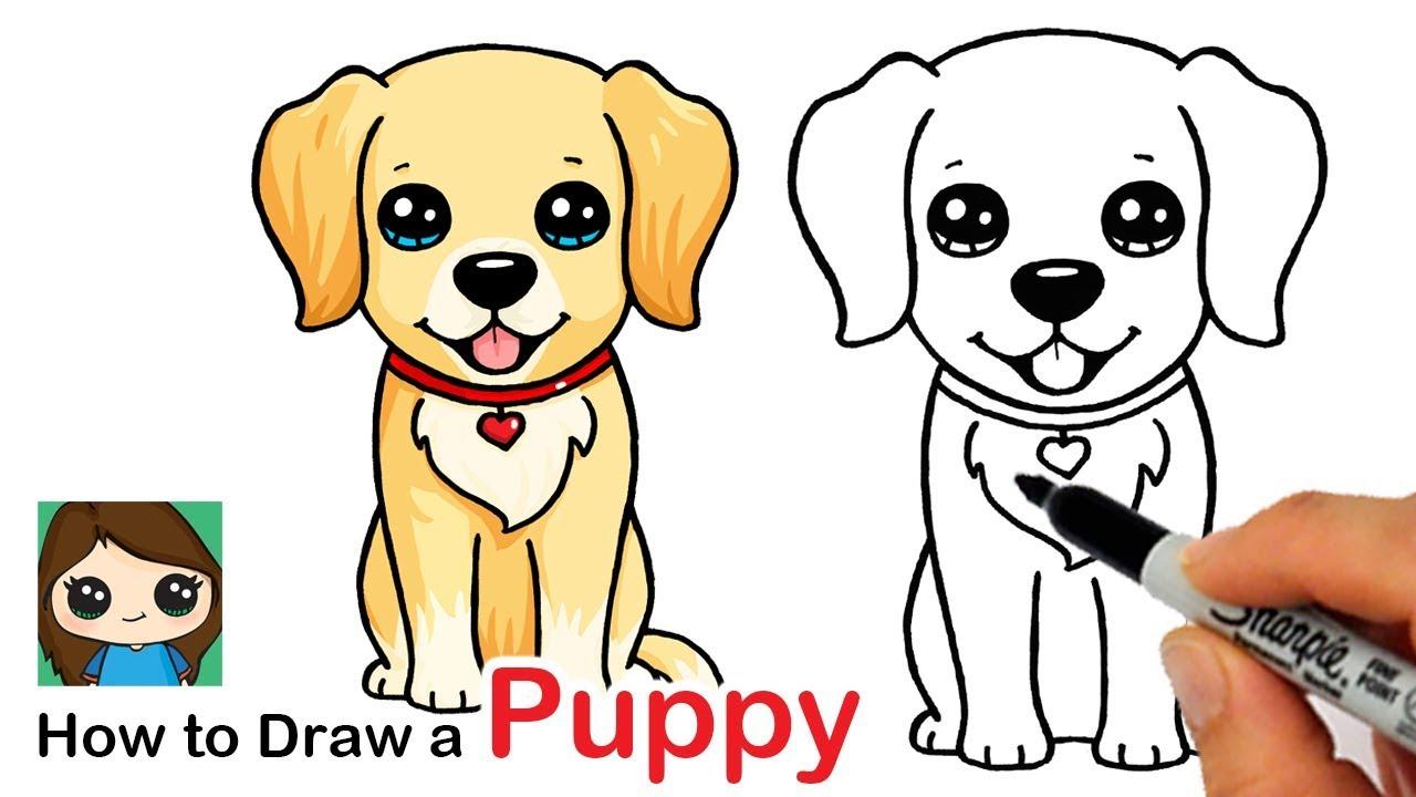 How To Draw A Labrador Golden Retriever Puppy Easy Youtube