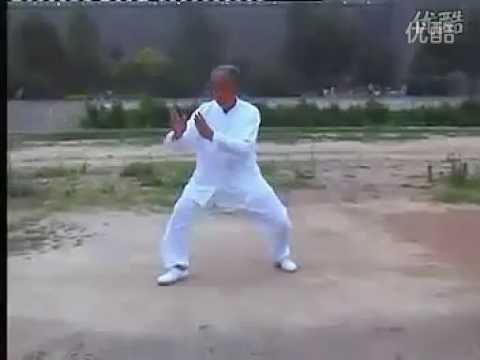 Zhaobao Taijiquan - Li Shude