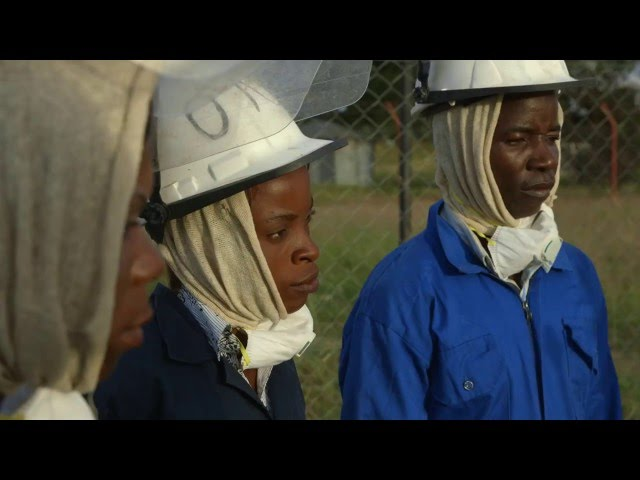 Equal Work, Equal Opportunity in Malaria Prevention