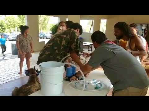 Operation Care: Puerto Rico