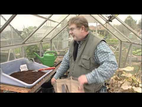 How To Grow Potatoes Youtube