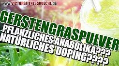 GERSTENGRASPULVER - Pflanzliches Anabolika? Natrliches Doping? - Victor's Fitnesskche