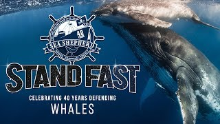 Stand Fast: 40 Years Defending Whales