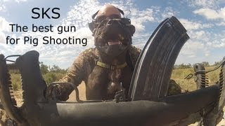 The Best Gun for Hunting Wild Pigs in Australia- Part 5- SKS